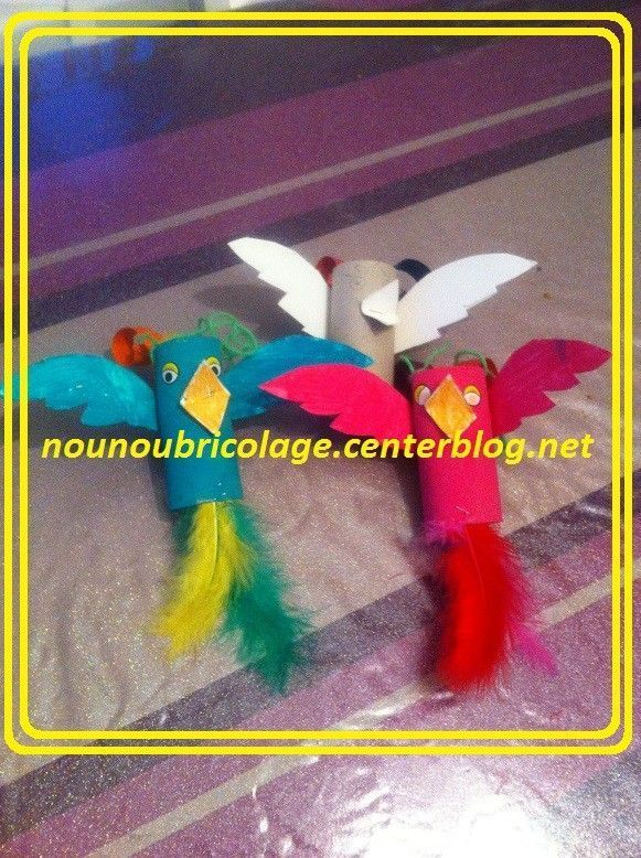 activite manuelle perroquet