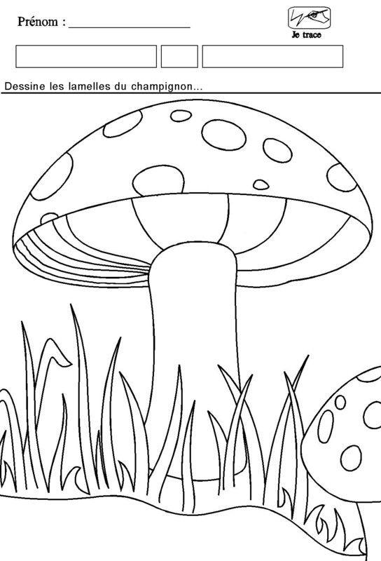 Coloriage - Dessiner un champignon ...